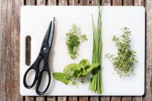Хотите остаться умной в старости - кушайте много зелени