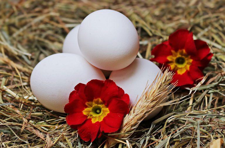 Белок яйца для лица