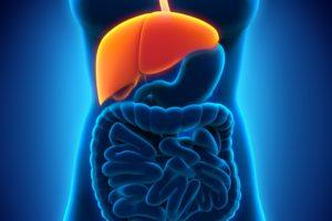 Жировое увеличение печени: причины и последствия