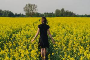 Зверобой – трава для женщин, для чего и как принимать