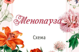 Протокол коррекции симптомов менопаузы