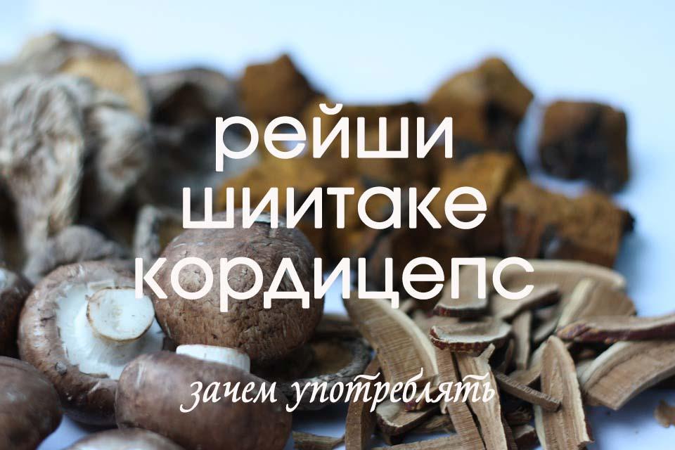 грибы рейши шиитаке